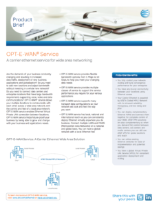 OPT-E-WAN® Service